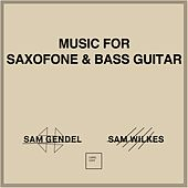 Music for Saxofone & Bass Guitar by Sam Gendel