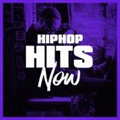 Hip-Hop Hits Now de Various Artists