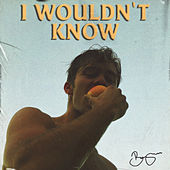 I Wouldn't Know by Benjamin Ingrosso