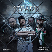 Steady de Chino XL
