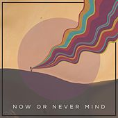 Now or Never Mind by Airside