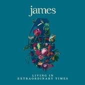 Many Faces (Edit) de James