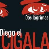 Dos lágrimas by Diego El Cigala