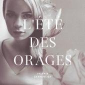 L'été des orages by Valérie Carpentier