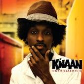 Troubadour (Edited Version) von K'naan