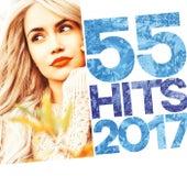 55 Hits 2017 de Various Artists