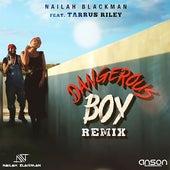 Dangerous Boy by Nailah Blackman