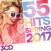 55 Hits Spring 2017 de Various Artists