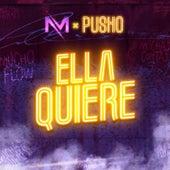 Ella Quiere by Pusho