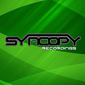 Syncopy Recordings Hard Trance Anthems, Vol. 3 by Various Artists