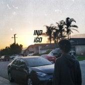 Indigo Project by Koji