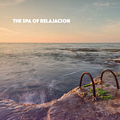 The Spa of Relajacion by Various Artists