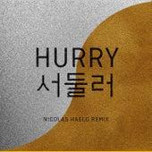 Hurry Hurry (Nicolas Haelg Remix) de Baba Shrimps