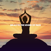 Relax to the Sound of Pads by Various Artists