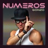 Numeros de Gonzo