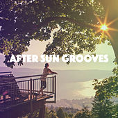 After Sun Grooves by Various Artists