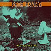 What You Wanted von Pete Ewing