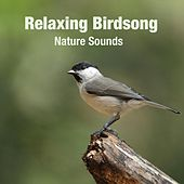 Relaxing Birdsong by Nature Sounds (1)