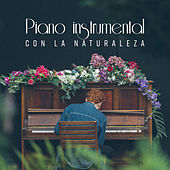 Piano instrumental con la naturaleza de Various Artists