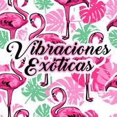 Vibraciones Exóticas by Chillout Lounge