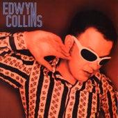 I'm Not Following You von Edwyn Collins