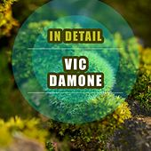 In Detail de Vic Damone