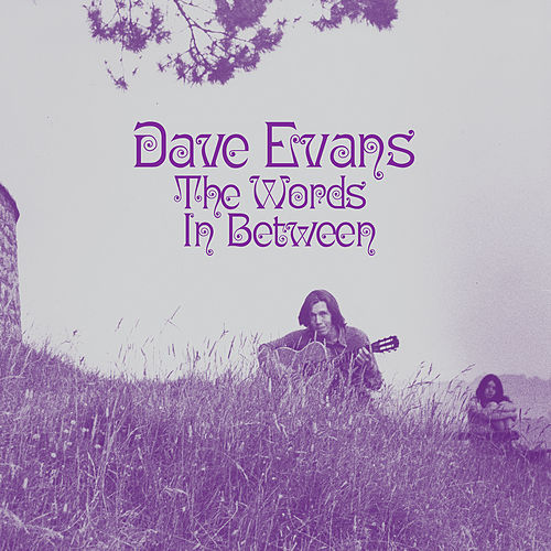 The Words In Between by Dave Evans