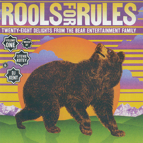 Rools For Rules by Various Artists