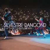 Si Mi Canto Fuera Tu Encanto (En Vivo) de Silvestre Dangond