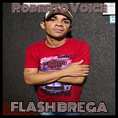 Flashbrega by Roberto Voice