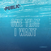 One That I Want by The Public