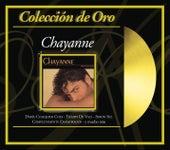 Coleccion De Oro: Provocame de Chayanne