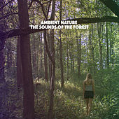 Ambient Nature: The Sounds of the Forest by Various Artists