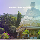 Nature Sounds for Healing by Various Artists