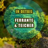 In Detail by Ferrante and Teicher