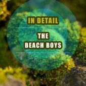 In Detail de The Beach Boys