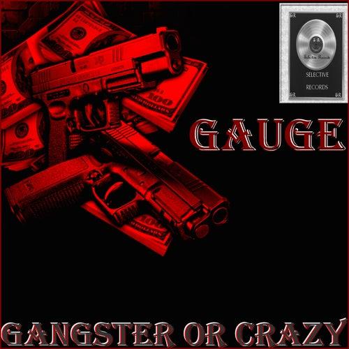 Gangster or Crazy by Gauge