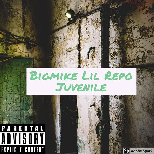 Juvenile by Big Mike