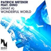 (What A) Wonderful World by Patrick Metzker