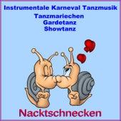Instrumentale Karneval Tanzmusik, Tanzmariechen,Gardetanz,Showtanz (Samba, Pop, Rock and Roll, Polka) de Various Artists