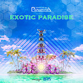 Exotic Paradise - EP by Various Artists
