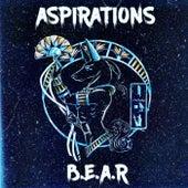 Aspirations by Bear