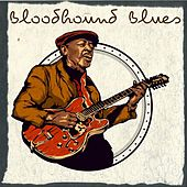 Bloodhound Blues by MP Music House