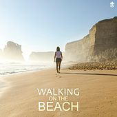 Walking on the Beach by Various Artists