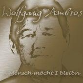 A Mensch möcht I bleibn von Wolfgang Ambros