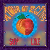 A Tour of Two Cities (Live) von Soup
