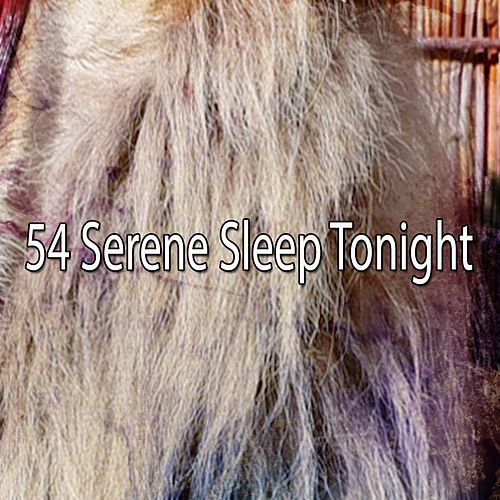 54 Serene Sleep Tonight by Nature Sound Series