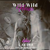Wild Wild Horses by Lotus & Antonia