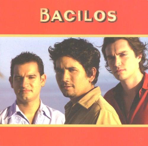 Bacilos by Bacilos