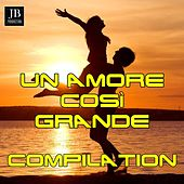 Un Amore Cosi Grande de Various Artists